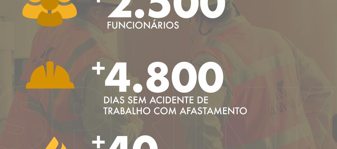 estatísticas SPRINK